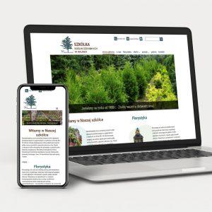 Projekt i wykonanie strony internetowej
